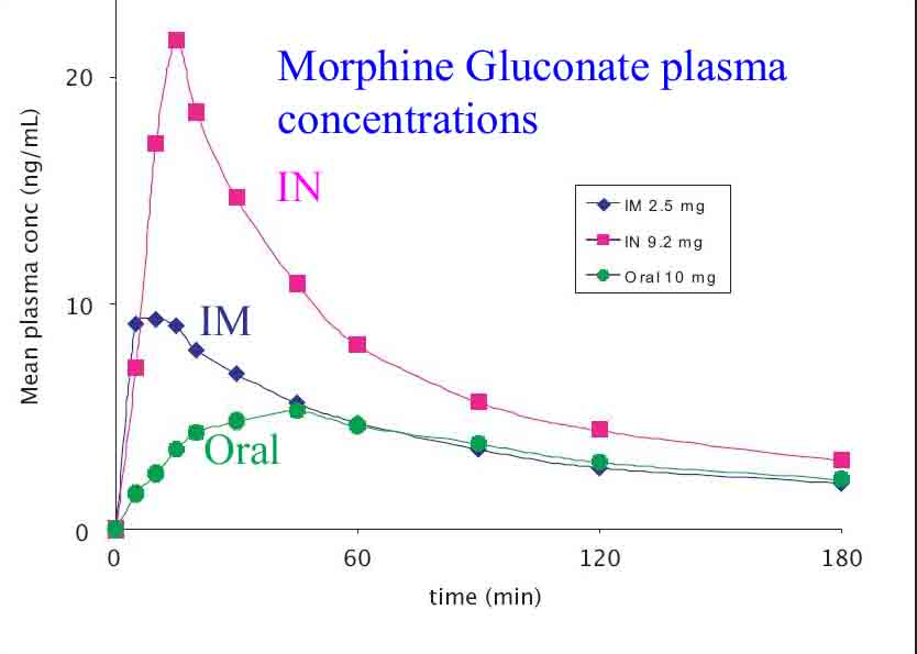 Morphine plasma concentrations following IN, IM and oral dosing